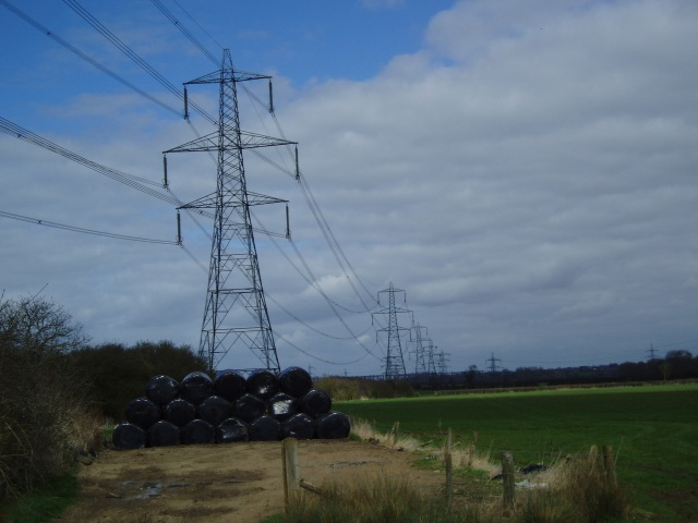 Pylons, following an abandoned railway's course