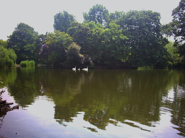 Lake on Wandsworth Common