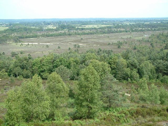 Ramsdown Plantation