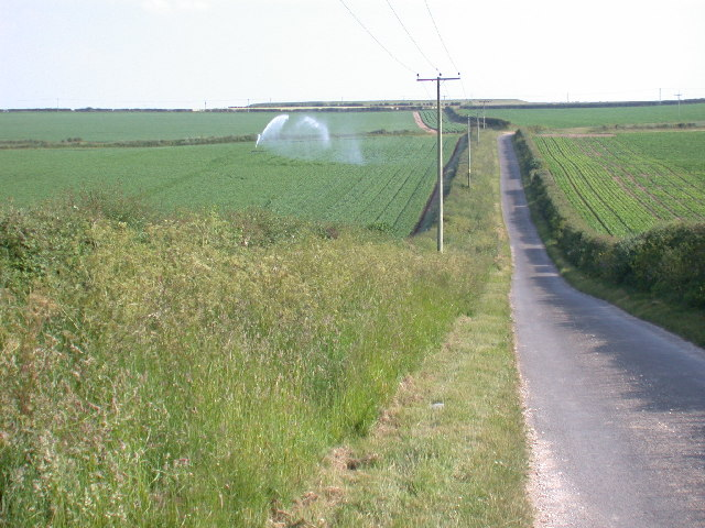 Titchwell to Choseley Road