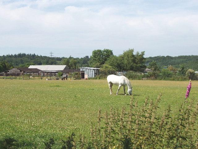 Alderbourne Farm near Fulmer