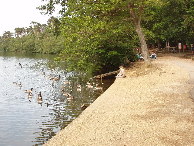 Blackpark Lake, Iver Heath
