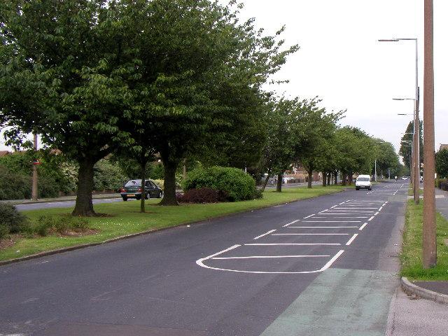 Preston Road, Hull