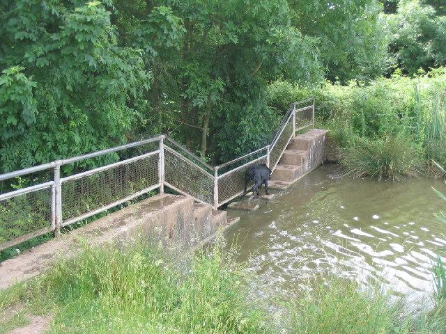 Millpond Dam, Coombegreen, Castlemorton