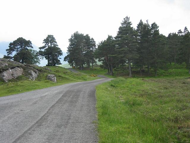 Glen Lyon road running through trees and rocks