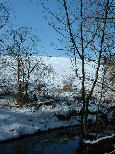 Sledging field Holywell Dene