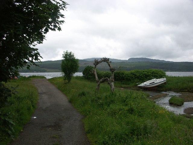 Rowan Tree Ring near Strachur