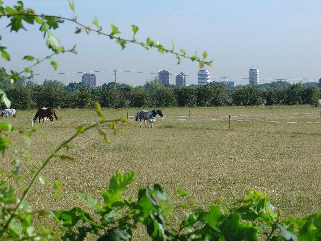 Vicarage Farm, Sunbury