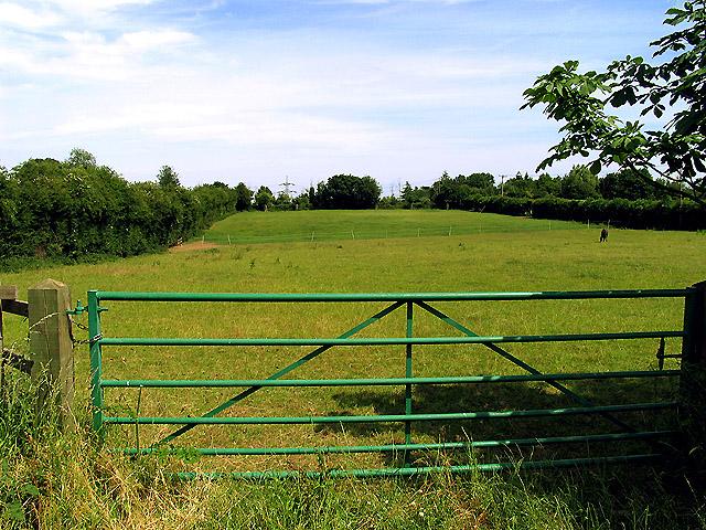 Paddock near Upper Basildon