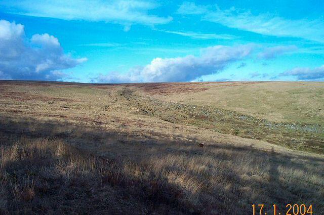 Yealm Head - Dartmoor