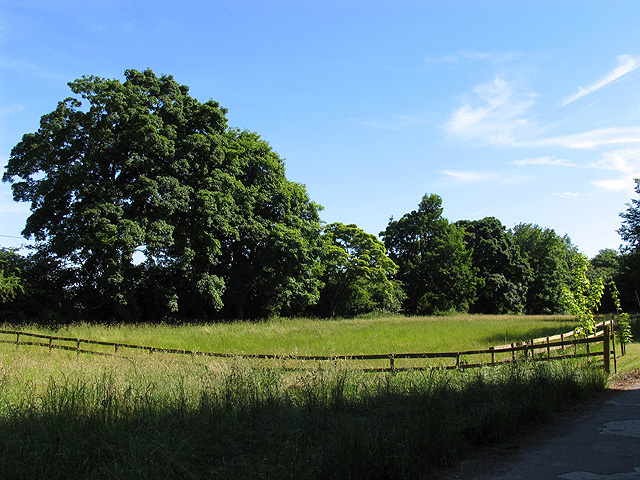 Fallow Field at Woodrows Farm