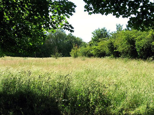 Fallow field: Compton