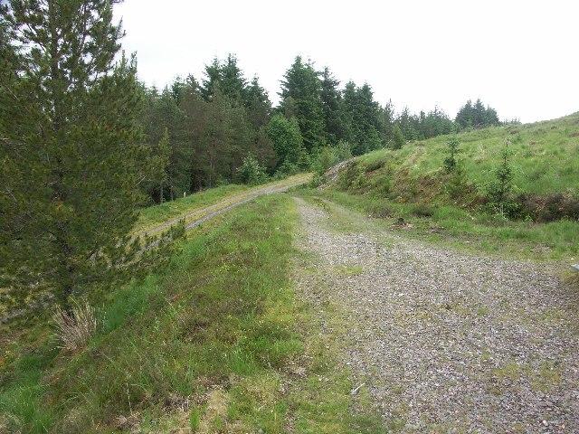 Forest track near Inverlair