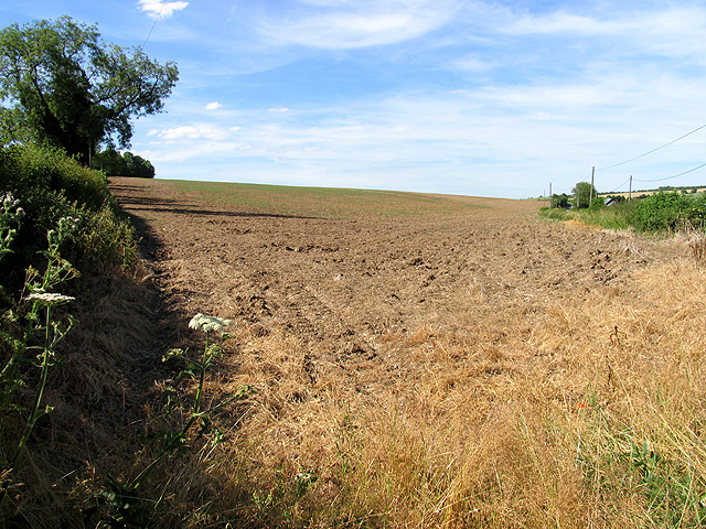 Farmland near  Hampstead Norreys