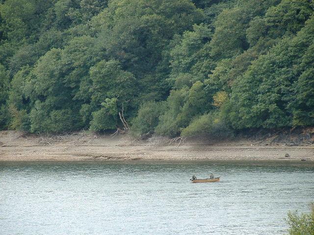 Llys y Fran Shoreline
