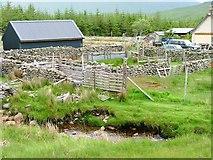 NM6331 : Abandoned sheep pens, Ishriff by Mick Garratt