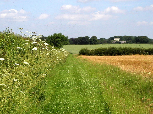 The footpath from Preston to Wyton