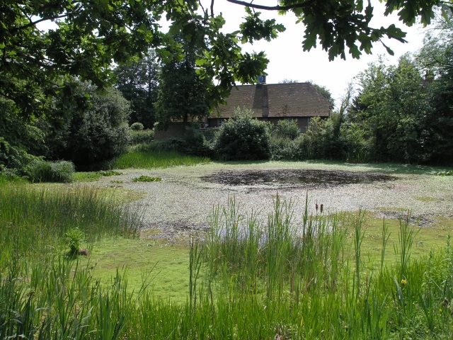 Village pond with village hall in the background