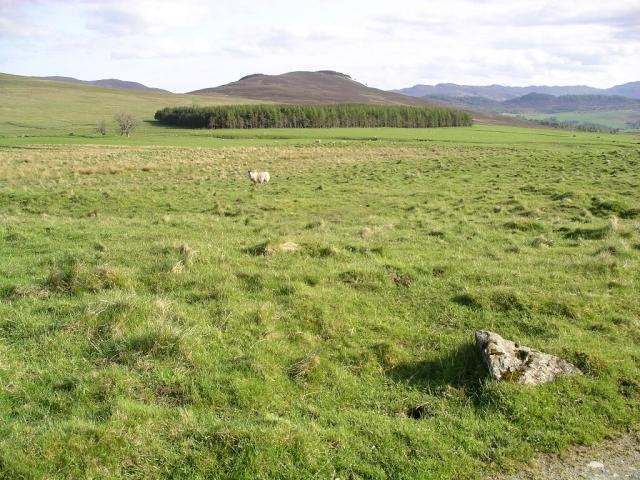 Path from Loch Moraig to Carn Liath (1)