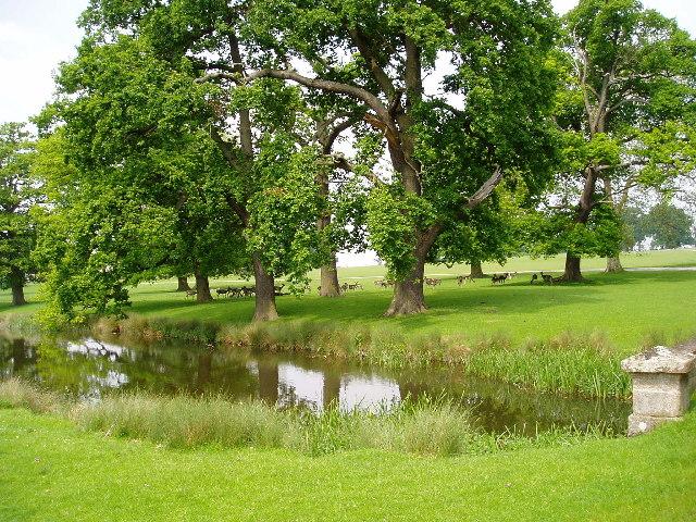 Packington Park