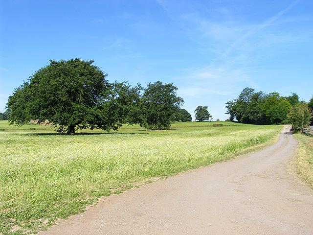 Farmland near Englefield