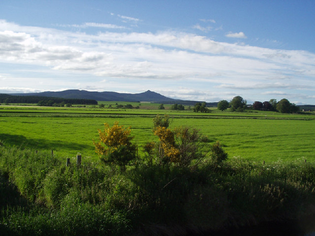Looking across farmland towards Bennachie
