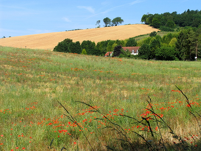 Farmland near Streatley and Basildon