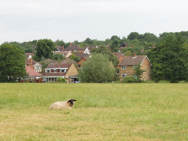Higher Denham houses from the River Misbourne