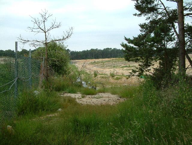 Landfill, Ringwood Forest