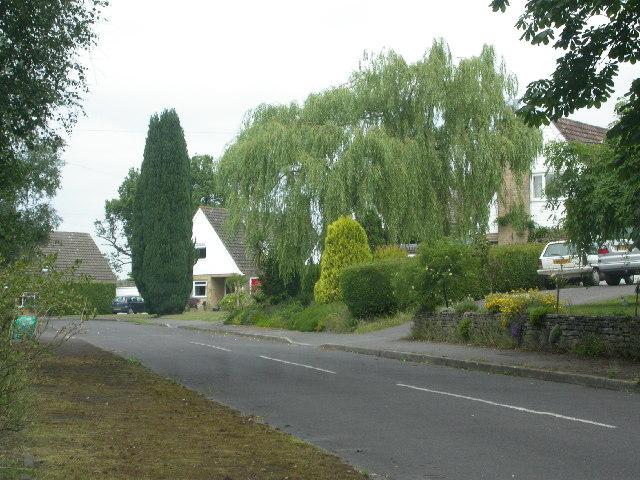 Hewshott Grove