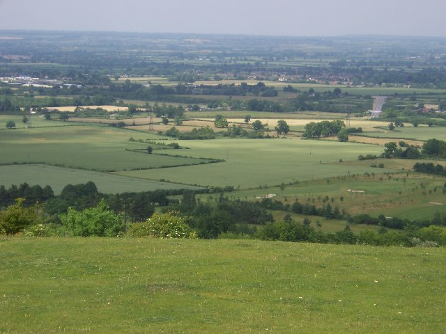 Coombe Hill looking North