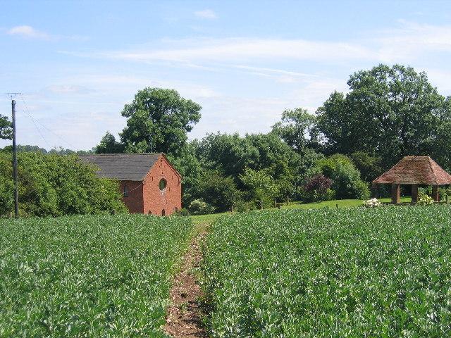 Dingle House Farm