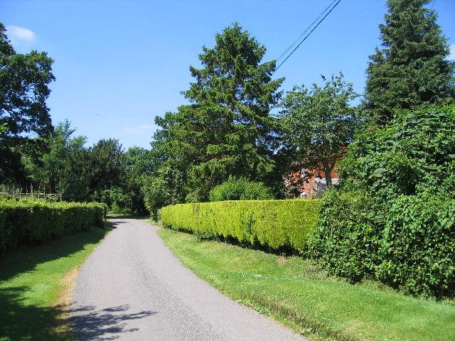 Mows Hill Road