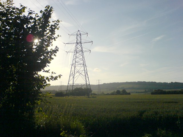 Pylons, through Barley Fields