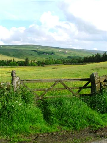 Farm Gate, Hay Meadow Looking Across Hudes Hope Beck
