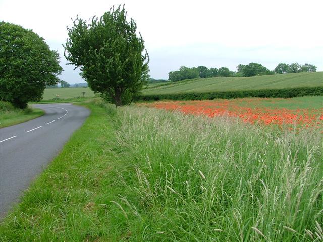 Road Bend