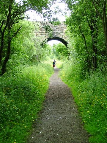 Road Bridge Over Disused Railway