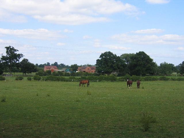 Fosters Farm