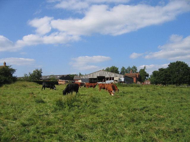 May's Hill Farm