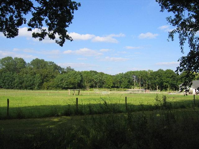 Foreign Park