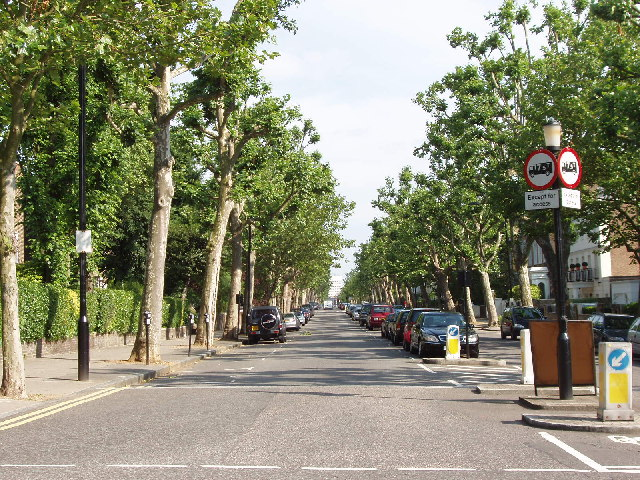Hamilton Terrace, lined by trees