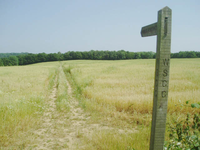 Footpath through the field towards the East
