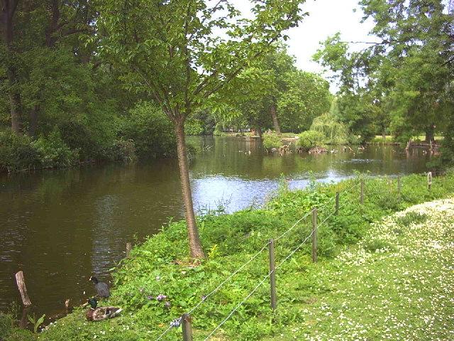 Waddon Ponds.