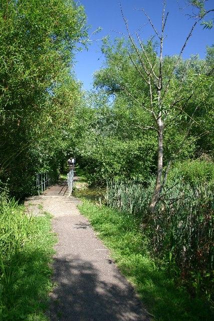Water Meadows, Bury St Edmunds