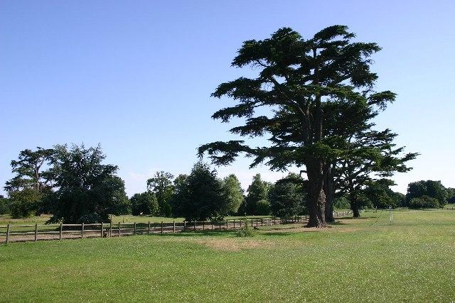 Hardwick Heath, Bury St Edmunds
