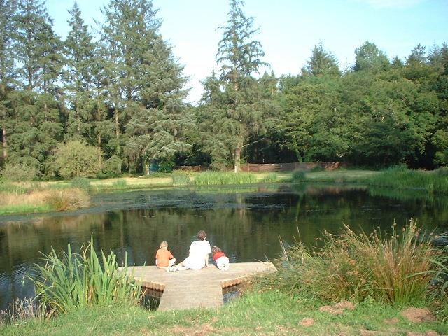 Fowey Trout Pond