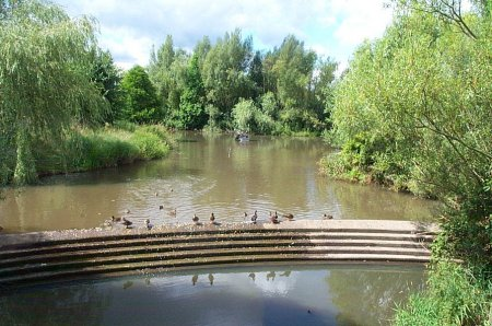 Bewbush Water Gardens