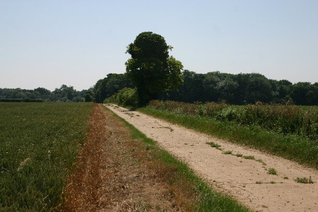 Bridleway near Great Barton