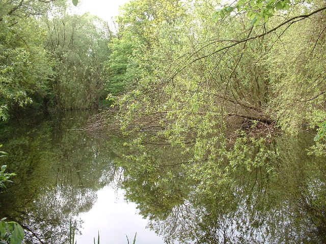 Gerry's Hole, pond near the Icknield Way