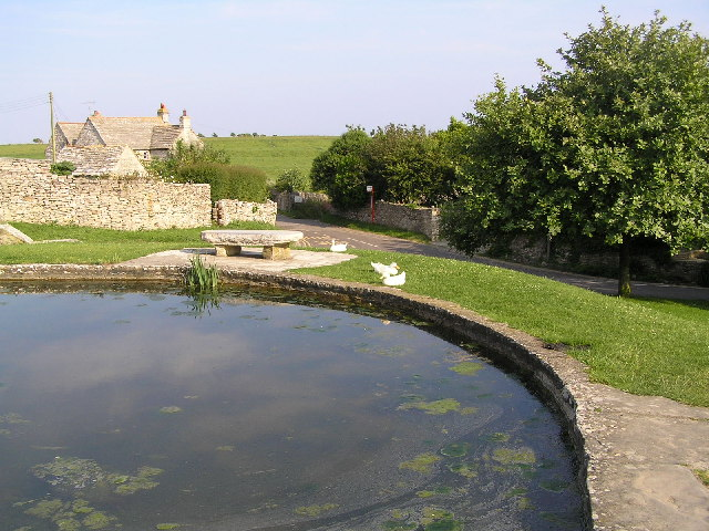 Duck pond at Worth Matravers